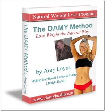DAMY-Method-Program-Cover